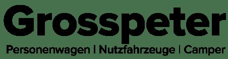 Grosspeter AG